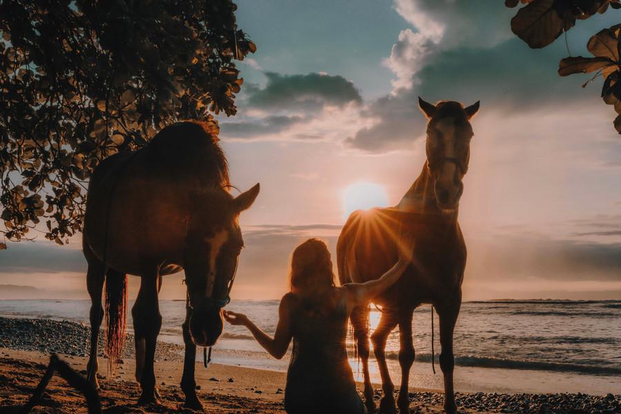 Horse Spirit Healing, Costa Rica