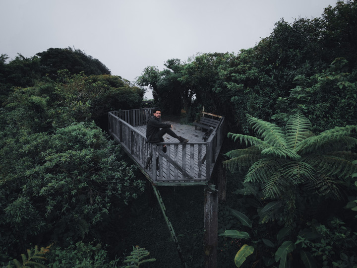 Monteverde Cloudforest