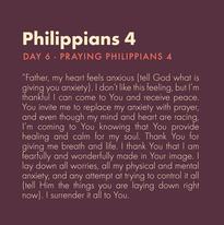 Day 6 - Praying Scripture ( c)