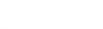 DSWV png logo.png