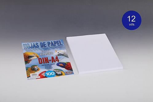 100 Hojas De Papel Blanco 80 Gr Para Impresora