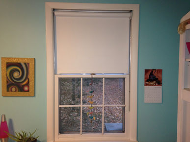 Roller Shade for Windows