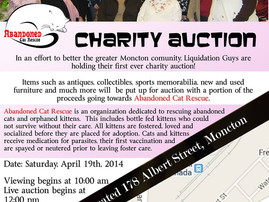 CHARITY AUCTION:  Abandonded Cat Rescue Makes Our First Hat Trick in April!