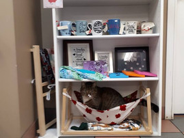 Every Kitty needs a Hammock, right? Nigel would like let all his feline friends know that he finds t
