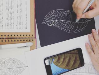 おきみゅーで大人の美術の教室 第一回目は葉脈でペン画(線画)の世界
