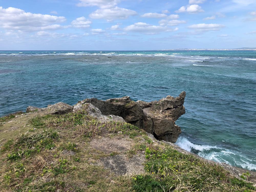 処女作『海は蒼く』のきっかけとなったカーミージー。亀の顔に似ていることからつけられた