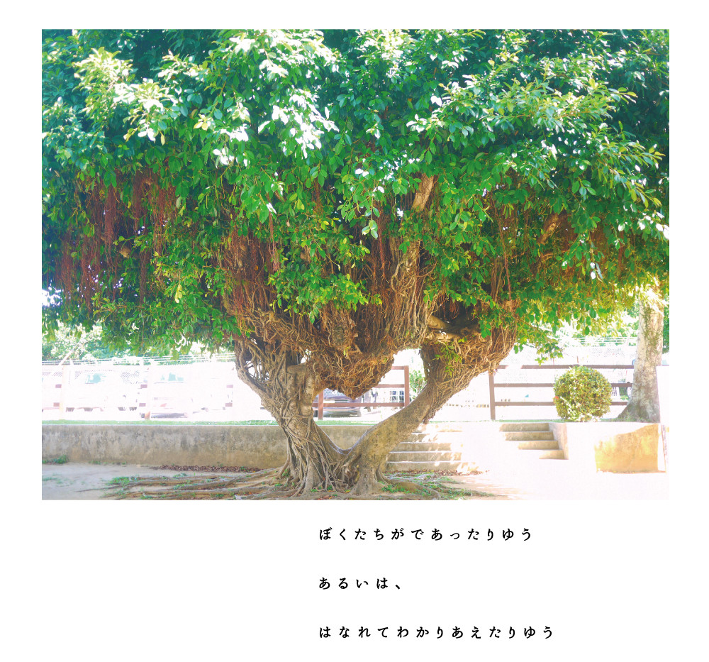 futenma_0511_13.jpg