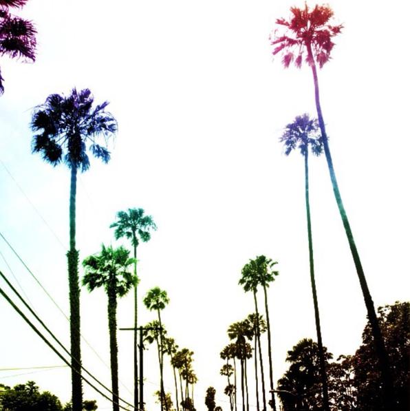 LA Palms