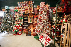 The Christmas Tree_2017 (4).jpg
