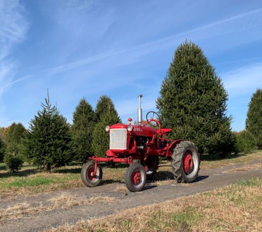 Antique Tractor Photography Session