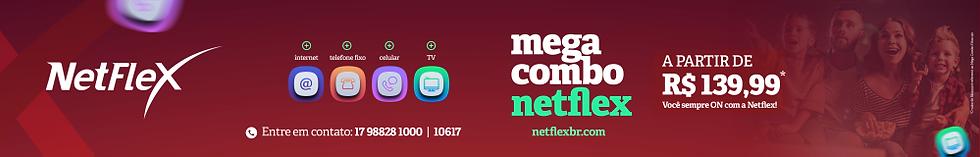 NETFLEX ARTE SITE.png