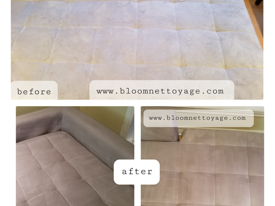 Cleaning of Suede Couch