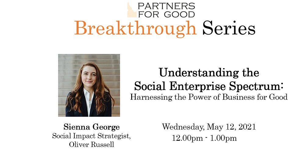 Understanding Social Enterprise Systems: Harnessing the Power of Business for Good