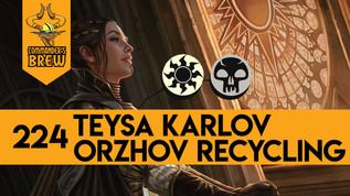 Teysa Karlov Orzhov Recycling - 224