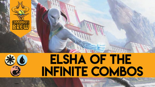 Elsha of the Infinite Combos - 258