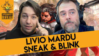 Livio Mardu Sneak & Blink - 274