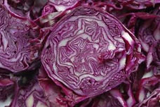 cabbage red color.jpg