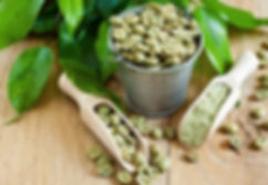 green coffee bean extract green coffee bean in drum