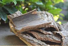 Eucommia bark.jpg