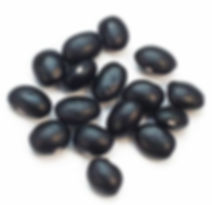 black bean Glycine soja Sieb.jpg