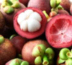 mangosteen.jpg