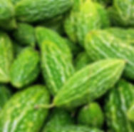 bitter melon Momordica charantia.jpg