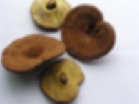 Organic Reishi whole Hangzhou New Asia International Co., Ltd