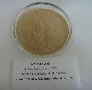 Saccharomyces cerevisiae yeast powder