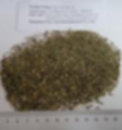 SteviaLeaf Tea Bag Cut