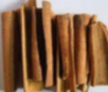 Cinnamomum bark.jpg