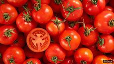 tomato lycopene.jpg