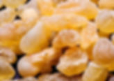 Boswellia Serrata.jpg
