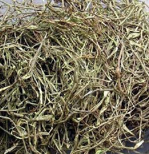 white willow bark.jpg