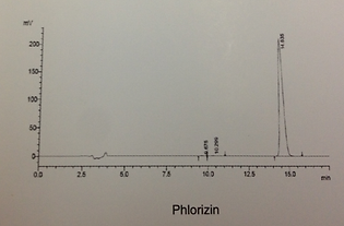 phlorizin hplc