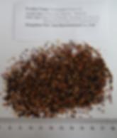 SchisandraFruit Tea BagCut fine cut