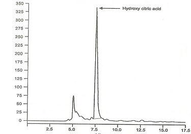 garcinia cambogia extract fruit HPLC