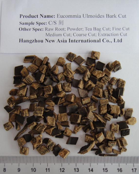 Eucommia Ulmoides Bark Tea Bag Cut CS cut