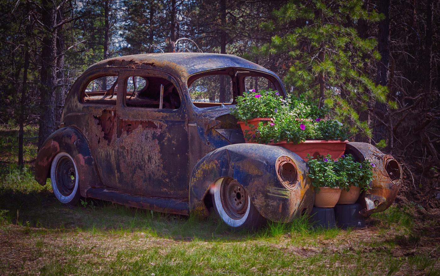 Yard Art Old Cars