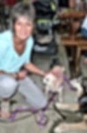 Dog Trainer Ulli Mattern