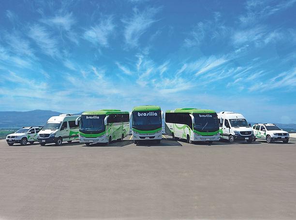 buses todos.jpg
