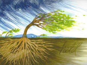 Spiritual Roots