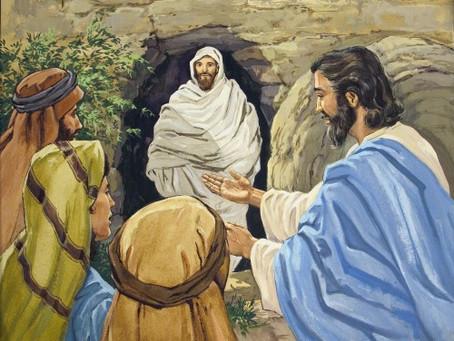 Lazarus, Forensic Pathology of the Bible