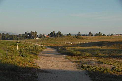 Meadowview Trail PSD.jpeg