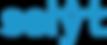 logo-selyt-color.png