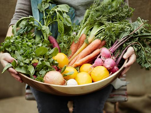 Ouvir o nosso corpo e respeitar a natureza.  A importância de uma alimentação sazonal.