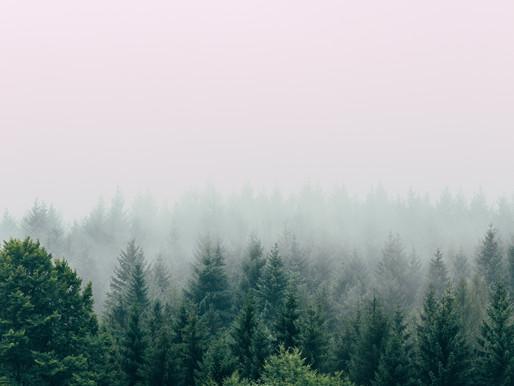 Respirar e visualizar