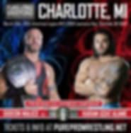Heavyweight Title Match.jpg