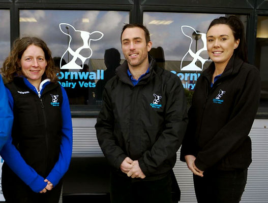 our-team-cornwall.jpg