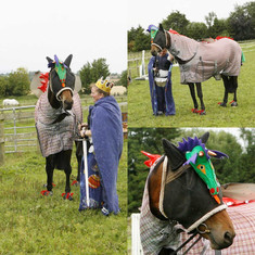Durham Equine Entry