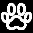 Pet Paw